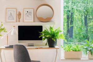 Пет идеи как успешно да организираме удобен офис кът у дома